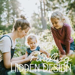 Finding Hidden Design